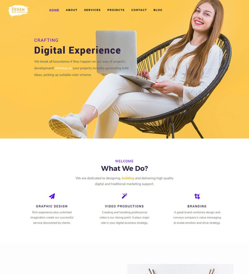 Denim Business Web Agency Studio Ready Made WordPress Website Theme