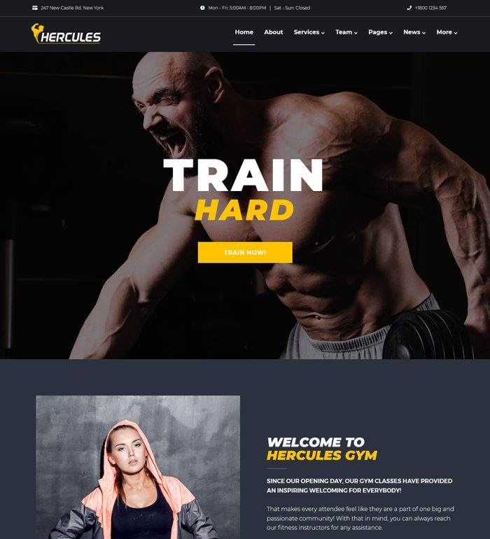 Hercules Gym And Fitness Health Center Ready Made WordPress Website Theme
